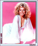 Cheryl Ladd few of the clips I've got. Foto 20 (Шерил Лэдд несколько клипов у меня. Фото 20)